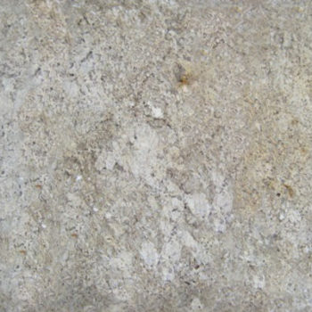 ABSOLUTE-CREAM-LOT-0613-LPM-13-tile