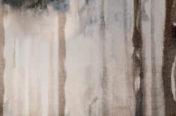Woods, 6.5mm Porcelain Surfaces
